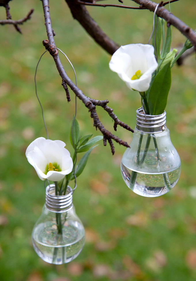 lightbulbs_annmerete01