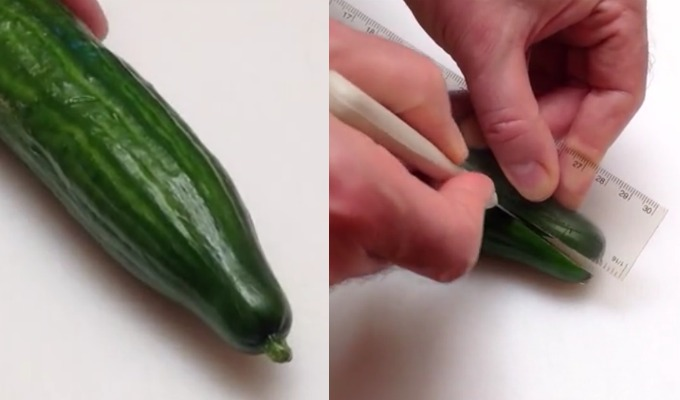 kutte agurk med linjal