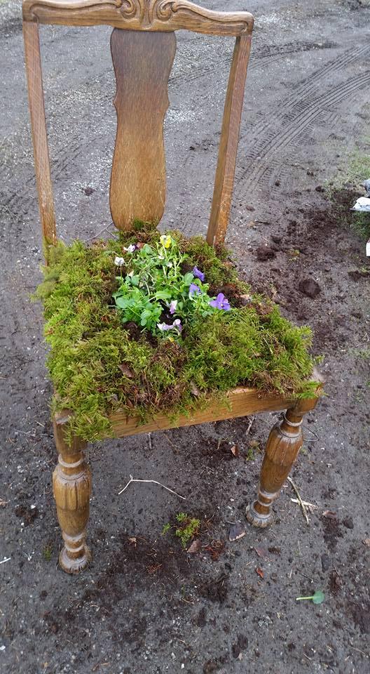 gammel stol blir blomsterpotte