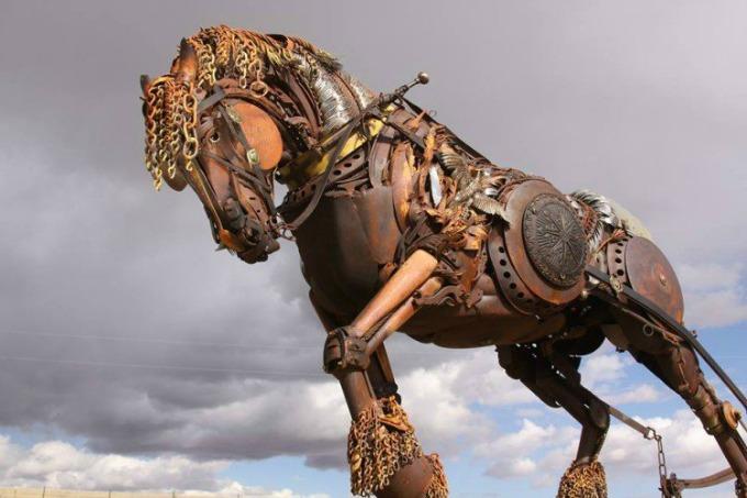 Hest Sett Forfra